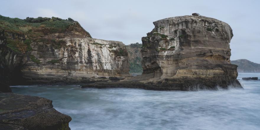 Conheça os segredos de Auckland, que conta com belezas estonteantes